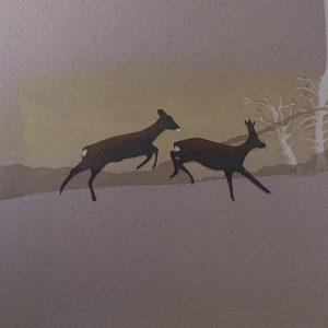Ceyvat roe deer