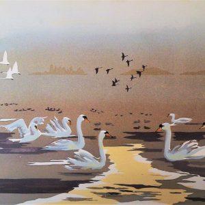 Etang de Landes with Swans